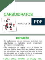 Resumo Carboidrato