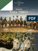 Catálogo El Chamame