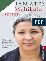 Der Multikulti Irrtum