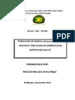 Plan de Tesis - QUINUA