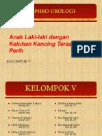 132089611-PPT-sistitis.ppt
