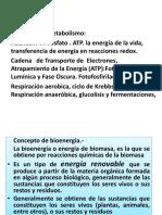 Clase - 2017 Bioenergia.pptx
