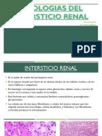 Patologias Del Intersticio Renal