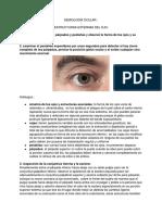 Semiología Ocular
