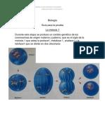 bioliogia guia 2° medio B (2)