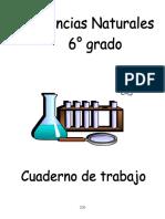 3 Ciencias