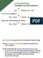 Fotosintesis-1pexa