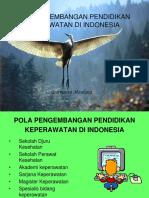POLA PENGEMBANGAN PENDIDIKAN KEPERAWATAN DI INDONESIA.ppt