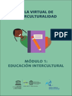 Aula Virtual de Interculturalidad