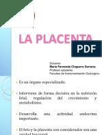 placenta.ppt