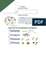 guia de Biologia 4B inmunidad.docx