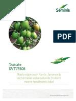 Tomate Saladette SVTJ7508