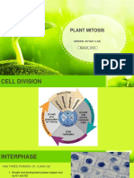 Plant  Cell Cycle.pptx
