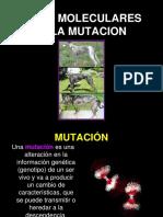 Bases Moleculares de La Mutacion