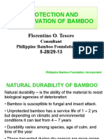PROTECTION AND PRESERVATION OF BAMBOO - fot.pdf