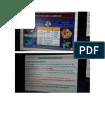 Diapositivas de Vergara, Fotos