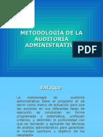 1 Metodolog de Audit Adminis Hpapp02