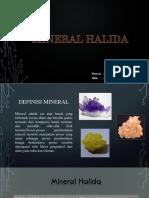Mineral Halida