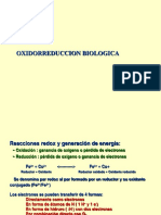 energía libre oxido reducción.pdf
