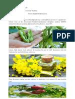 GMO 1.pdf