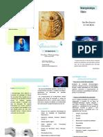 Flyer Neuropsicologia