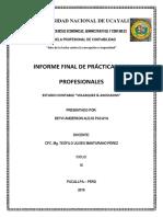 Estructura Del Informe de Prácticas Pre Profesionales
