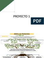 ARBOL DE PROBLEMAS p1.pptx