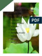 Mindfulness, Desensibilizacion Sitematica y Control Del Estrés