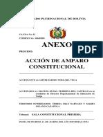 ANEXO 1