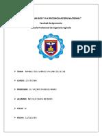Informe de Identificacion