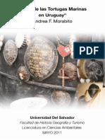 Uso de las tortugas marinas en Uruguay