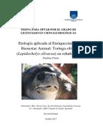 Etología aplicada al Enriquecimiento y Bienestar Animal