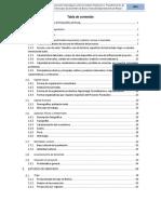 Informe Final SPDBV