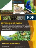 La Fauna en Bolivia