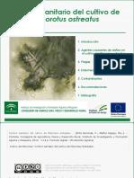Control Sanitario Del Cultivo de Pleorotus Ostreatus