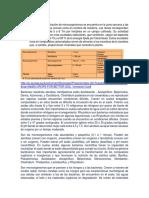 Determinación de bacterias totales, actinomycetos y hongos en diferentes suelos
