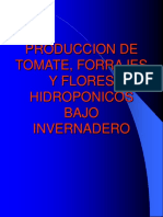 PRODUCCION DE TOMATE, FORRAJES Y FLORES HIDROPONICOS BAJO INVERNADERO