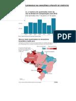 Pesquisa Sobre as Queimadas Na Amazônia Através de Gráficos