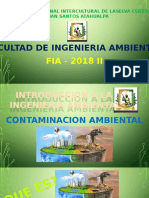Fia Contaminacion Ambiental