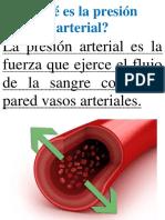 ROTAFOLIO DE PRESIÓN ARTERIAL.docx
