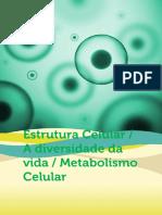 Estrutura Celular Diversidade Da Vida Metabolismo Celular