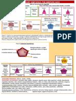 269010392-Protocolo-Dia-1-2014.pdf