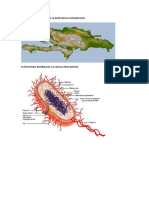 Sistema Montañoso de La Respublica Dominicana