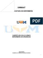 Enur_carpeta de Ciclo Clinico