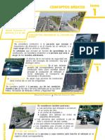 294469153-Manual-Conductor-DGT.pdf