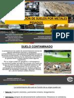 Contaminación de Suelos Por Metales Pesados