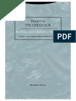 Martin Heidegger - Historia, Naturaleza, Estado