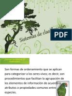 sistemasdeclasificacin-101115205046-phpapp01