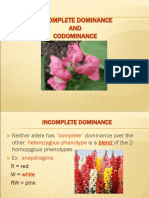 Codominance and Incomplete Dominance .ppt