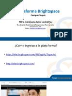 Guía para uso de Plataforma Brightspace.pdf